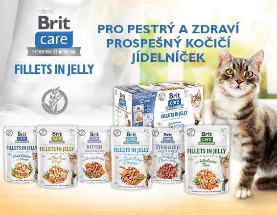 Brit Care Cat Fillets in Jelly