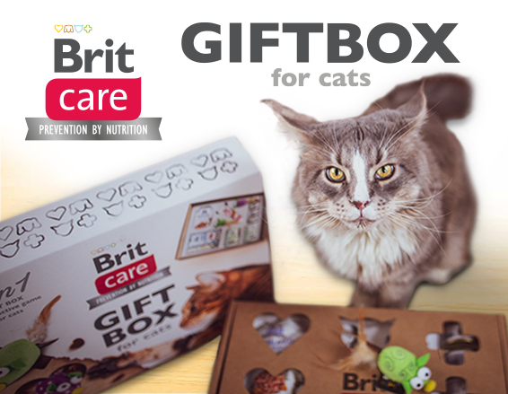 Brit Care Cat GIFT BOX 2v1